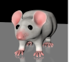 3dmodel lab mouse perspective.png