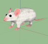 3dmodel lab mouse warehouse.png